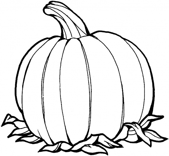 Pumpkin Templates For Kids To Color Images amp Pictures Becuo